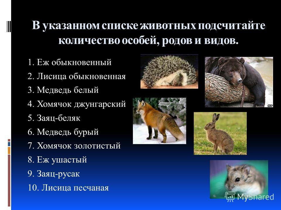 В указанном списке животных подсчитайте количество особей, родов и видов. 1. Еж обыкновенный 2. Лисица обыкновенная 3. Медведь белый 4. Хомячок джунгарский 5. Заяц-беляк 6. Медведь бурый 7. Хомячок золотистый 8. Еж ушастый 9. Заяц-русак 10. Лисица пе