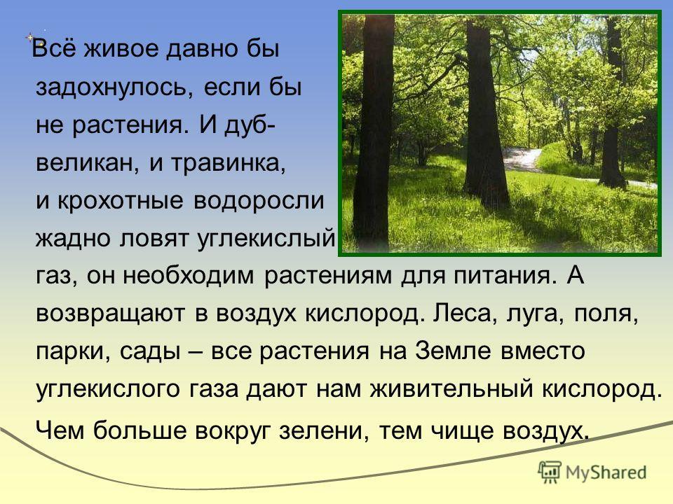 Всё живое давно бы задохнулось, если бы не растения. И дуб- великан, и травинка, и крохотные водоросли жадно ловят углекислый газ, он необходим растениям для питания. А возвращают в воздух кислород. Леса, луга, поля, парки, сады – все растения на Зем