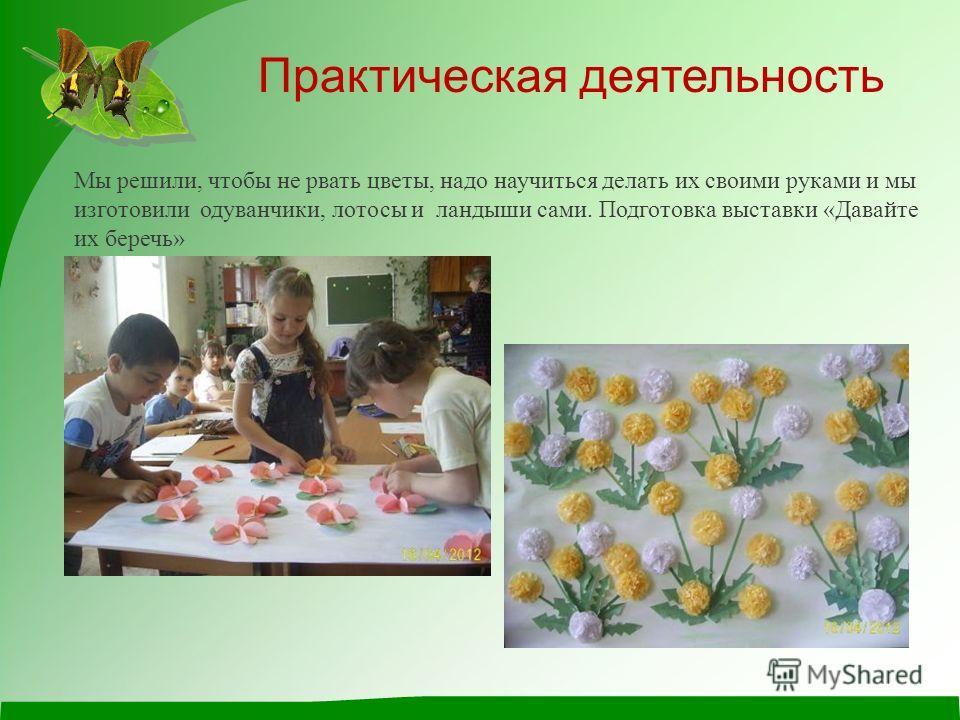 Мы решили, чтобы не рвать цветы, надо научиться делать их своими руками и мы изготовили одуванчики, лотосы и ландыши сами. Подготовка выставки «Давайте их беречь» Практическая деятельность