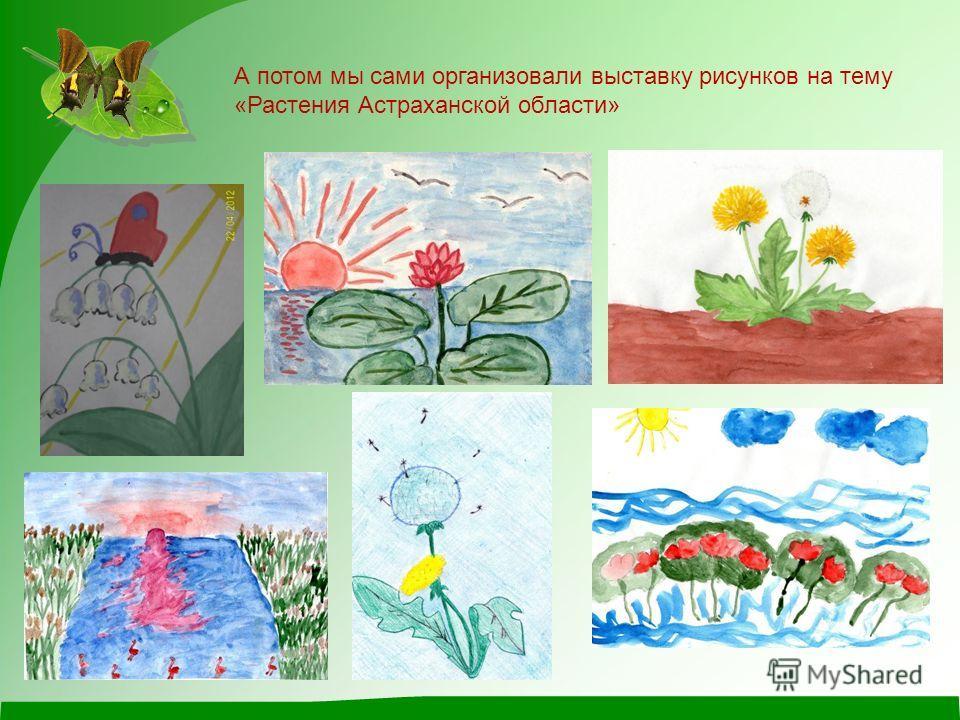 А потом мы сами организовали выставку рисунков на тему «Растения Астраханской области»