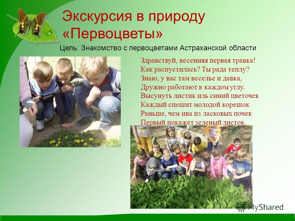 Экскурсия в природу «Первоцветы» Цель: Знакомство с первоцветами Астраханской области Здравствуй, весенняя первая травка! Как распустилась? Ты рада теплу? Знаю, y вас там веселье и давка, Дружно работают в каждом yглy. Высyнyть листик иль синий цвето