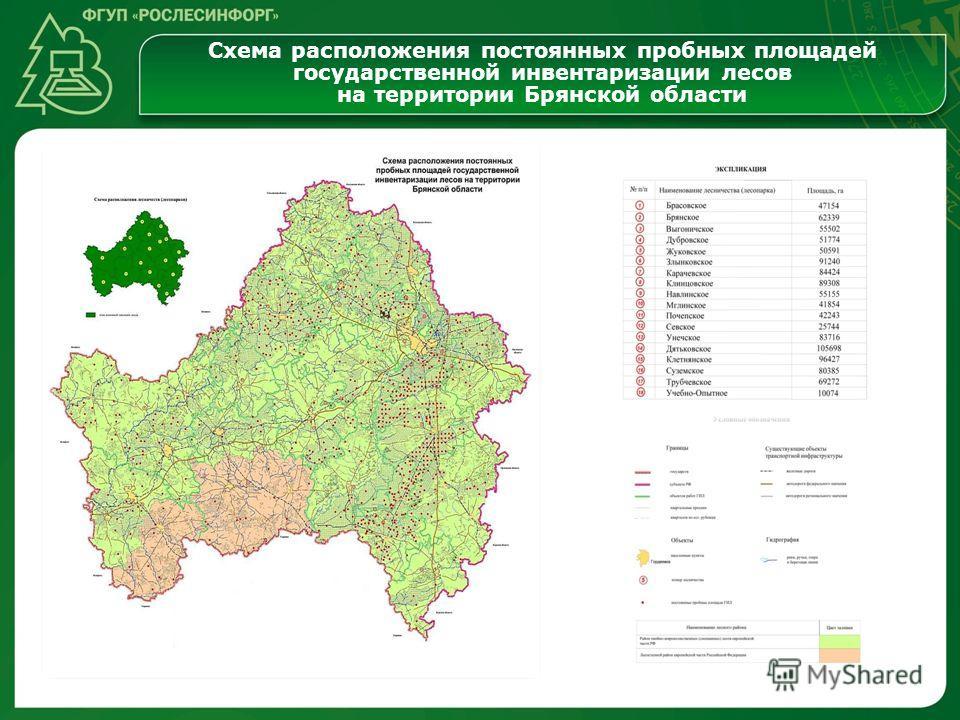 Схема расположения постоянных пробных площадей государственной инвентаризации лесов на территории Брянской области