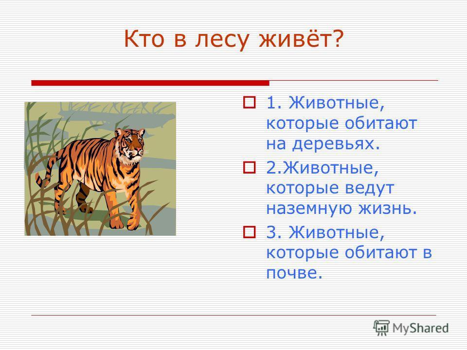 Кто в лесу живёт? 1. Животные, которые обитают на деревьях. 2.Животные, которые ведут наземную жизнь. 3. Животные, которые обитают в почве.