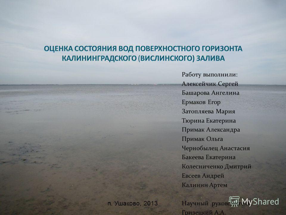 п. Ушаково, 2013