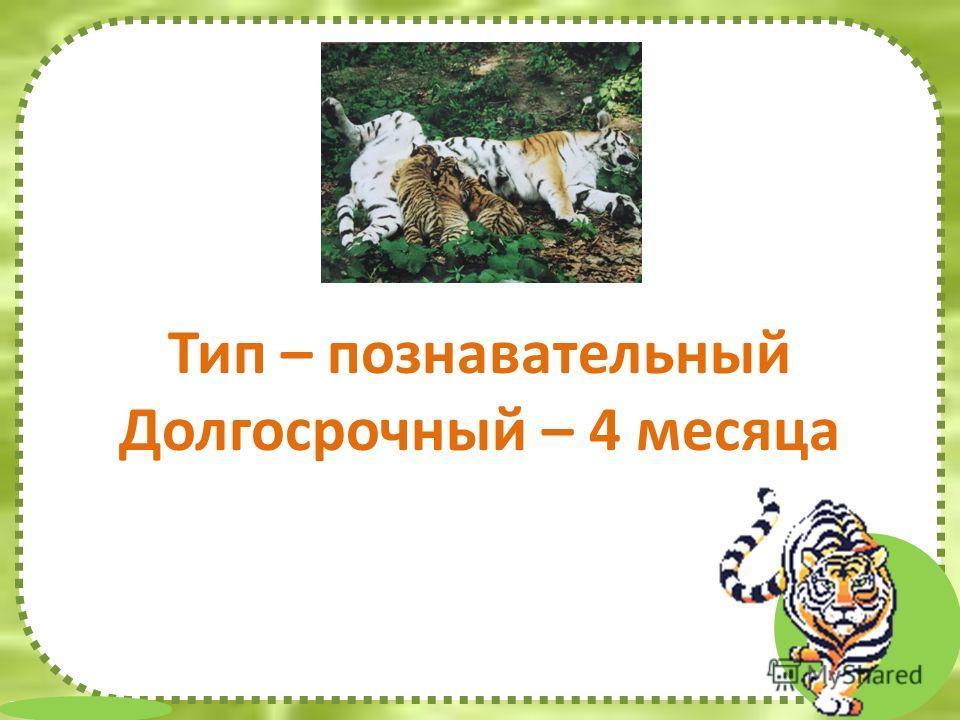 FokinaLida.75@mail.ru Тип – познавательный Долгосрочный – 4 месяца