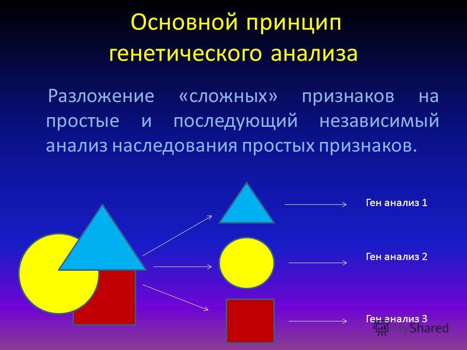 Основной принцип генетического анализа Разложение «сложных» признаков на простые и последующий независимый анализ наследования простых признаков. Ген анализ 1 Ген анализ 2 Ген анализ 3