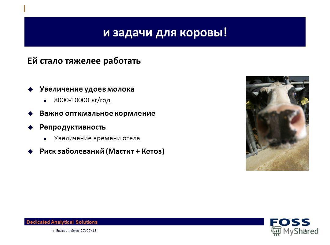 Dedicated Analytical Solutions г. Екатеринбург 27/07/13 11 и задачи для коровы! Ей стало тяжелее работать Увеличение удоев молока 8000-10000 кг/год Важно оптимальное кормление Репродуктивность Увеличение времени отела Риск заболеваний (Мастит + Кетоз