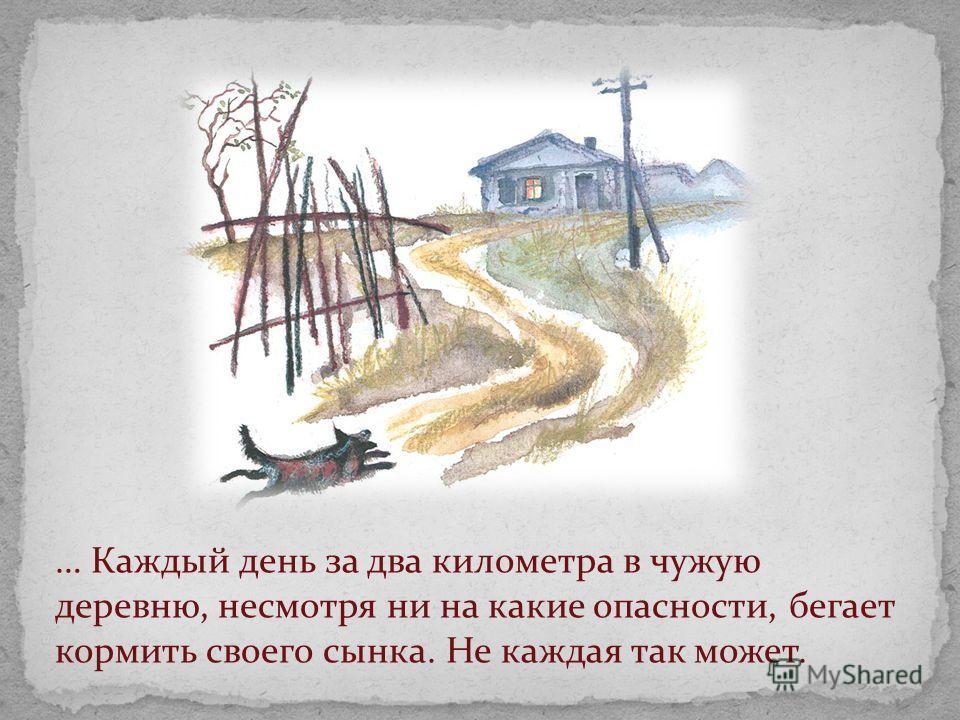 … Каждый день за два километра в чужую деревню, несмотря ни на какие опасности, бегает кормить своего сынка. Не каждая так может.