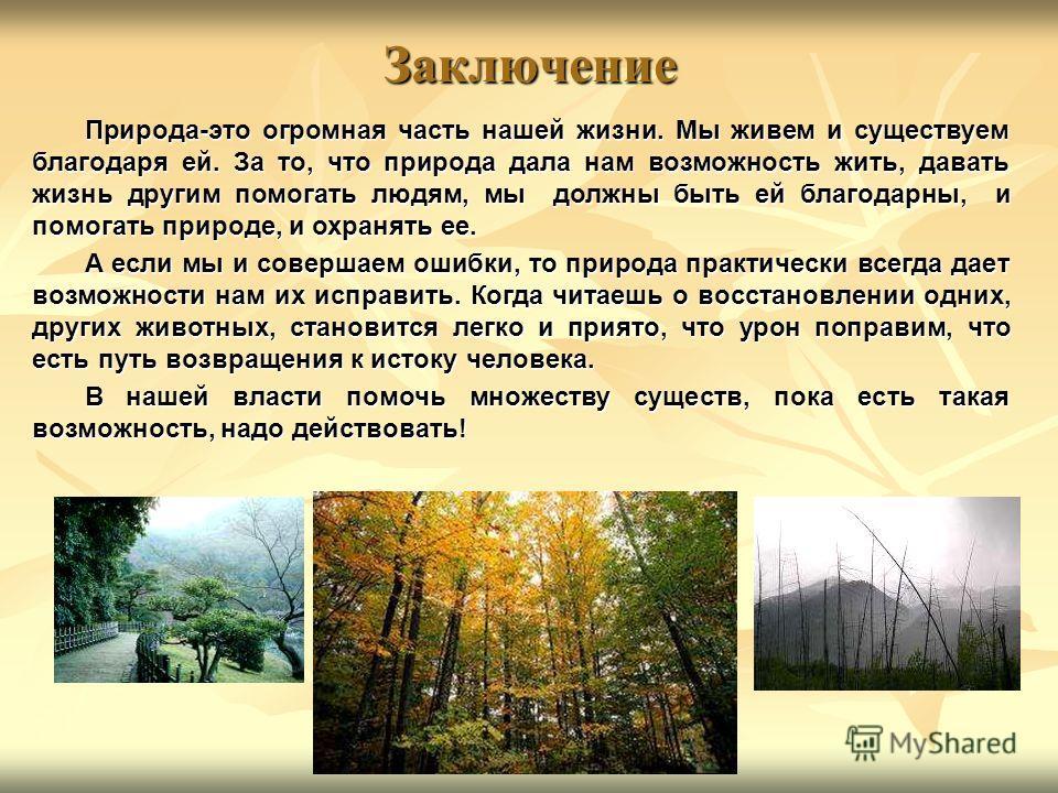 Заключение Природа-это огромная часть нашей жизни. Мы живем и существуем благодаря ей. За то, что природа дала нам возможность жить, давать жизнь другим помогать людям, мы должны быть ей благодарны, и помогать природе, и охранять ее. А если мы и сове