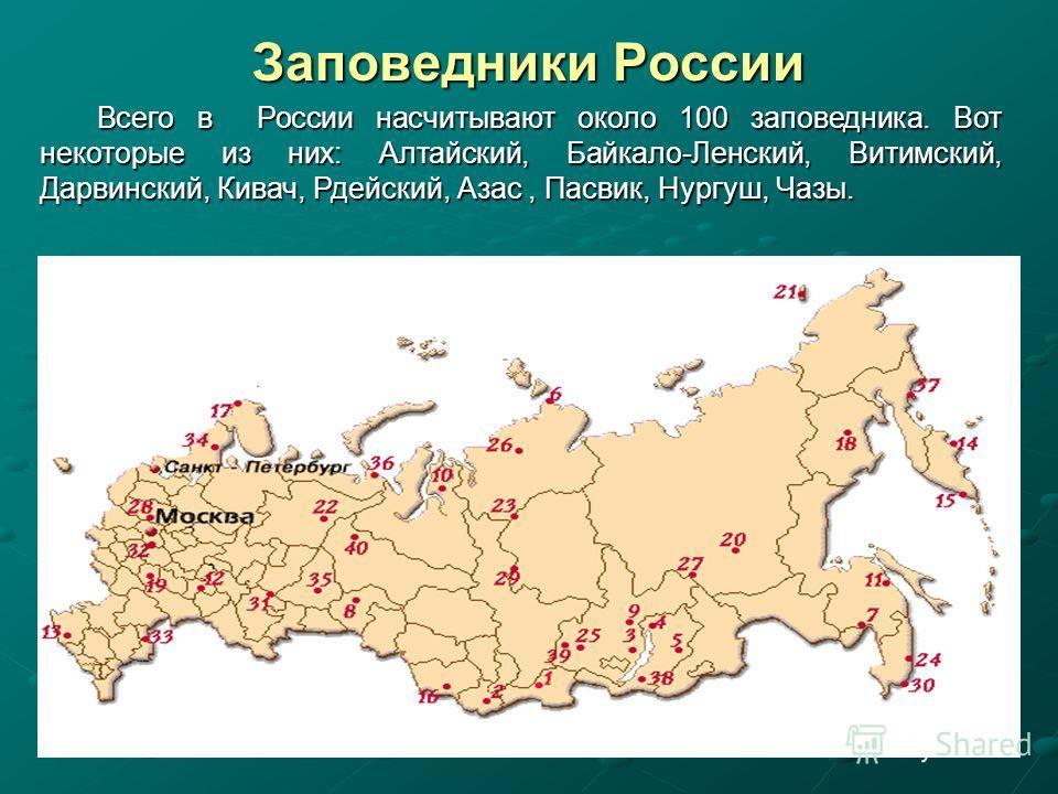 Заповедники России Всего в России насчитывают около 100 заповедника. Вот некоторые из них: Алтайский, Байкало-Ленский, Витимский, Дарвинский, Кивач, Рдейский, Азас, Пасвик, Нургуш, Чазы. Всего в России насчитывают около 100 заповедника. Вот некоторые