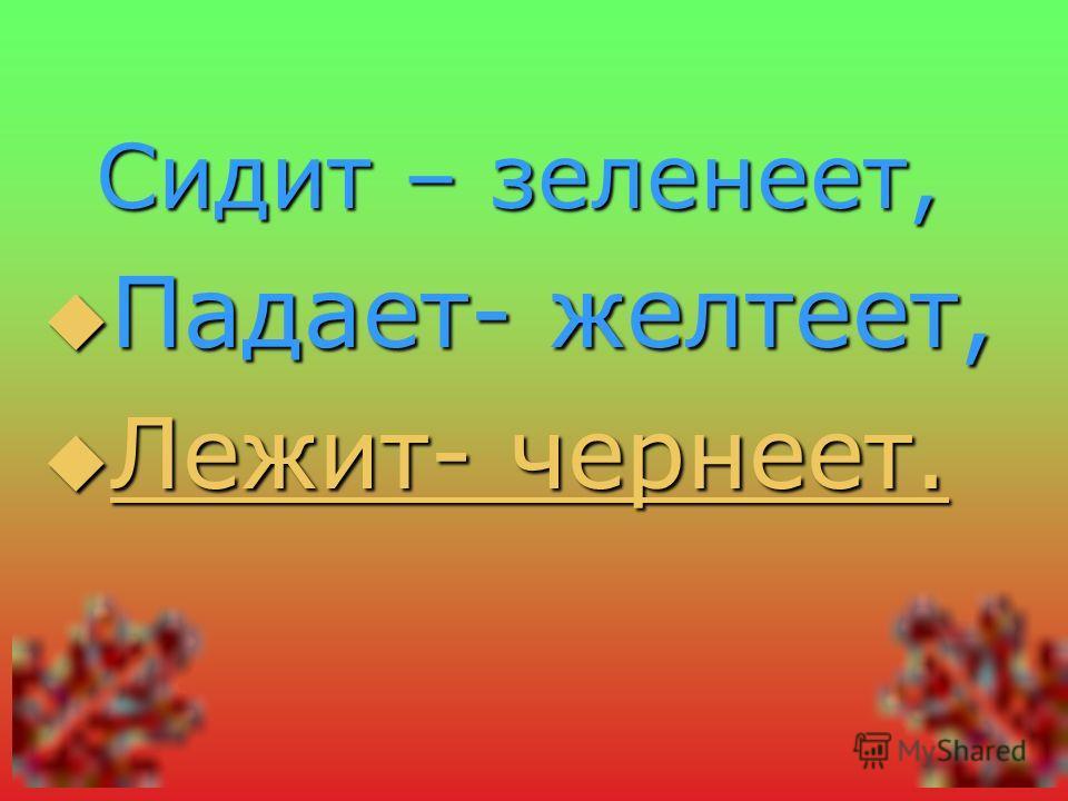 Сидит – зеленеет, Падает- желтеет, Л Л ееее жжжж ииии тттт ---- ч ч ч ч ееее рррр нннн ееее ееее тттт....