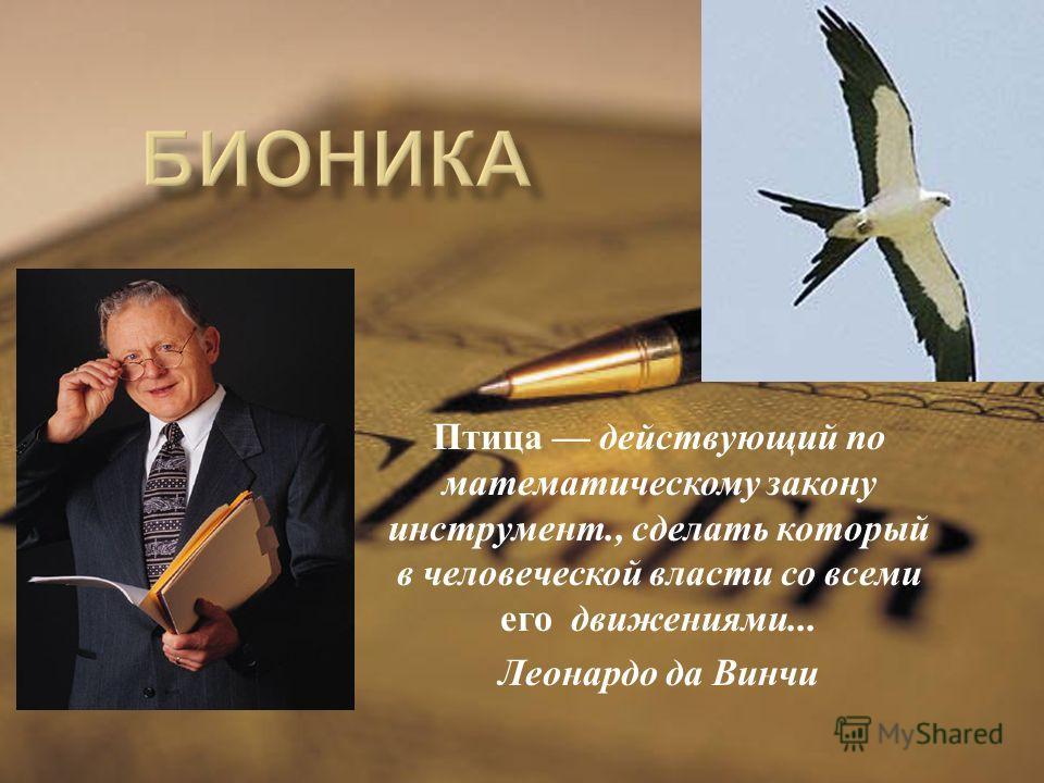 Птица действующий по математическому закону инструмент., сделать который в человеческой власти со всеми его движениями... Леонардо да Винчи