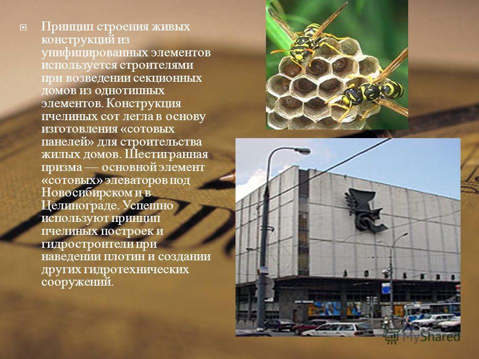 Принцип строения живых конструкций из унифицированных элементов используется строителями при возведении секционных домов из однотипных элементов. Конструкция пчелиных сот легла в основу изготовления « сотовых панелей » для строительства жилых домов.