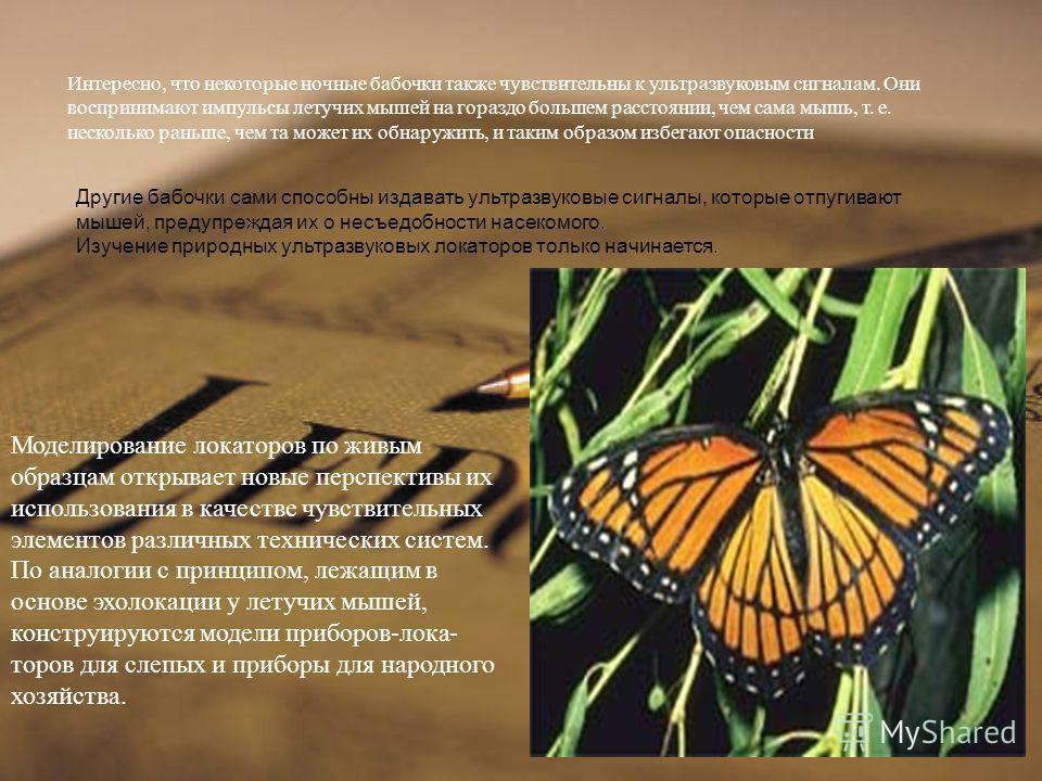 Интересно, что некоторые ночные бабочки также чувст  вительны к ультразвуковым сигналам. Они воспринимают импульсы летучих мышей на гораздо большем расстоянии, чем сама мышь, т. е. несколько раньше, чем та может их обнаружить, и таким образом избега