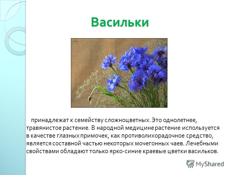 Васильки Васильки принадлежат к семейству сложноцветных. Это однолетнее, травянистое растение. В народной медицине растение используется в качестве глазных примочек, как противолихорадочное средство, является составной частью некоторых мочегонных чае