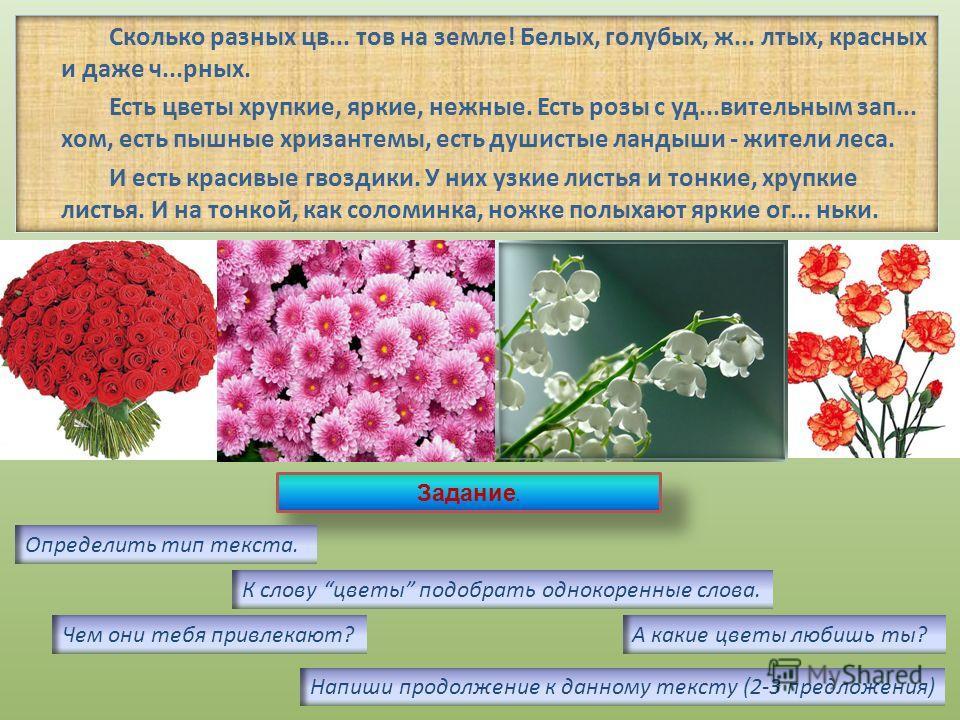 Цветы сопровождают нас всю жизнь: встречают при рождении, утешают в старости, радуют на свадьбе, именинах и празднествах. И дома, и на работе, весной и в лютый холод, жарким летом и осенью - цветы необходимы, без их красоты беднее становится наша жиз