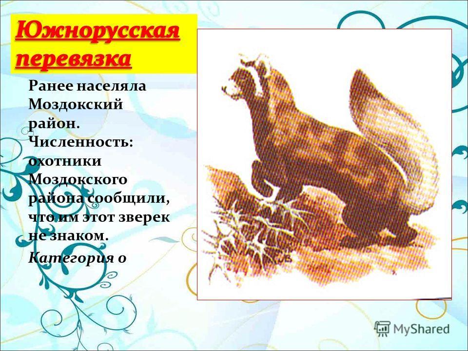 Ранее населяла Моздокский район. Численность: охотники Моздокского района сообщили, что им этот зверек не знаком. Категория 0