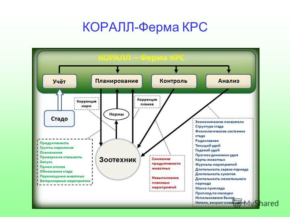 КОРАЛЛ-Ферма КРС