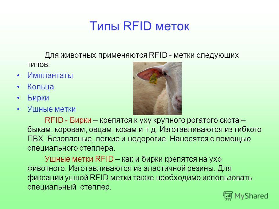 Типы RFID меток Для животных применяются RFID - метки следующих типов: Имплантаты Кольца Бирки Ушные метки RFID - Бирки – крепятся к уху крупного рогатого скота – быкам, коровам, овцам, козам и т.д. Изготавливаются из гибкого ПВХ. Безопасные, легкие