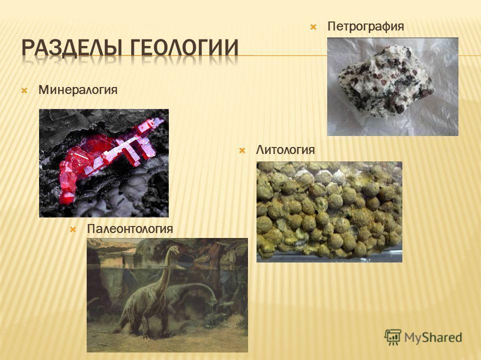 Минералогия Петрография Литология Палеонтология