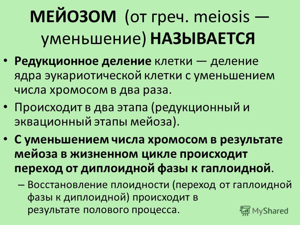 МЕЙОЗОМ (от греч. meiosis уменьшение) НАЗЫВАЕТСЯ Редукционное деление клетки деление ядра эукариотической клетки с уменьшением числа хромосом в два раза. Происходит в два этапа (редукционный и эквационный этапы мейоза). С уменьшением числа хромосом в
