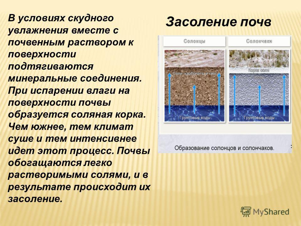 Засоление почв В условиях скудного увлажнения вместе с почвенным раствором к поверхности подтягиваются минеральные соединения. При испарении влаги на поверхности почвы образуется соляная корка. Чем южнее, тем климат суше и тем интенсивнее идет этот п