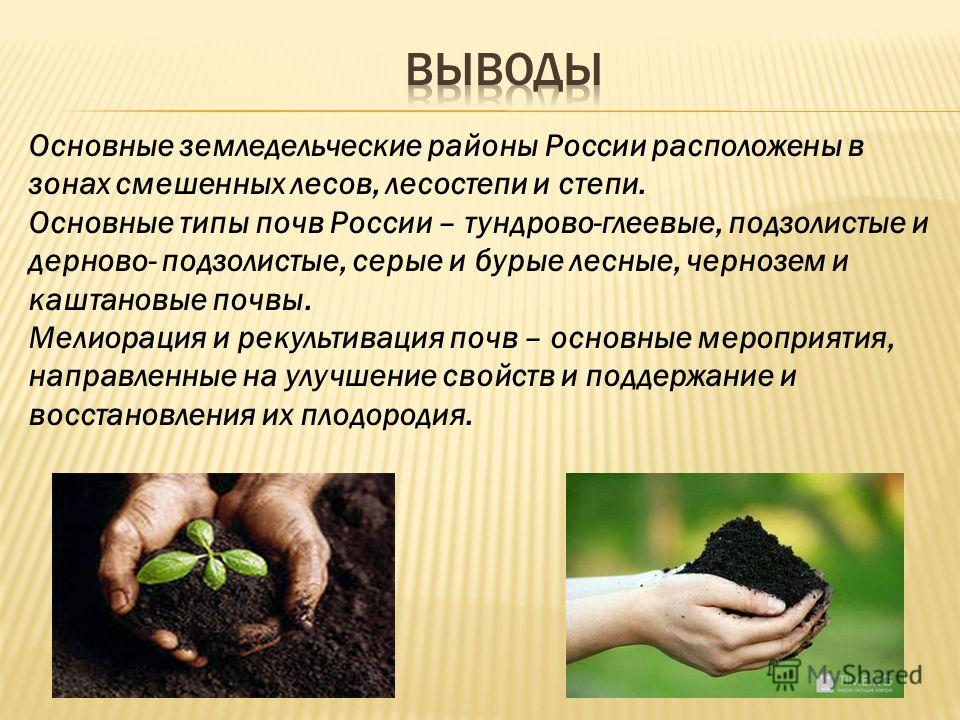 Основные земледельческие районы России расположены в зонах смешенных лесов, лесостепи и степи. Основные типы почв России – тундрово-глеевые, подзолистые и дерново- подзолистые, серые и бурые лесные, чернозем и каштановые почвы. Мелиорация и рекультив