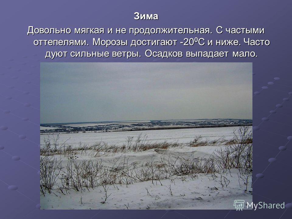 Зима Довольно мягкая и не продолжительная. С частыми оттепелями. Морозы достигают -20 0 С и ниже. Часто дуют сильные ветры. Осадков выпадает мало.