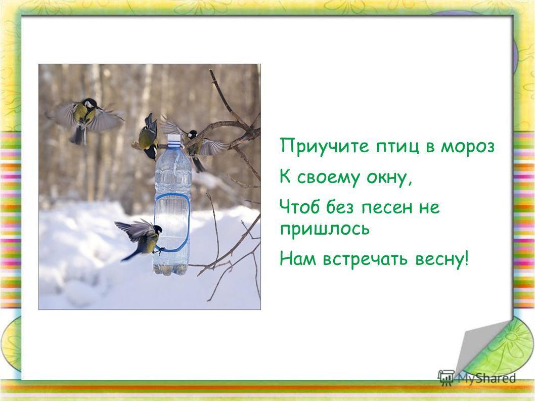 Приучите птиц в мороз К своему окну, Чтоб без песен не пришлось Нам встречать весну!