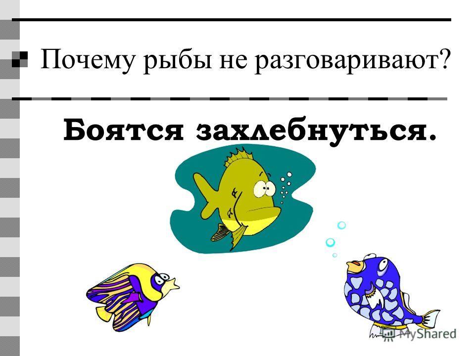 Почему рыбы не разговаривают? Боятся захлебнуться.