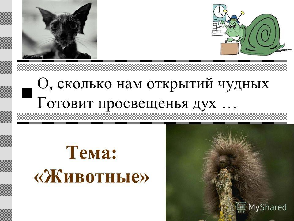 О, сколько нам открытий чудных Готовит просвещенья дух … Тема: «Животные»