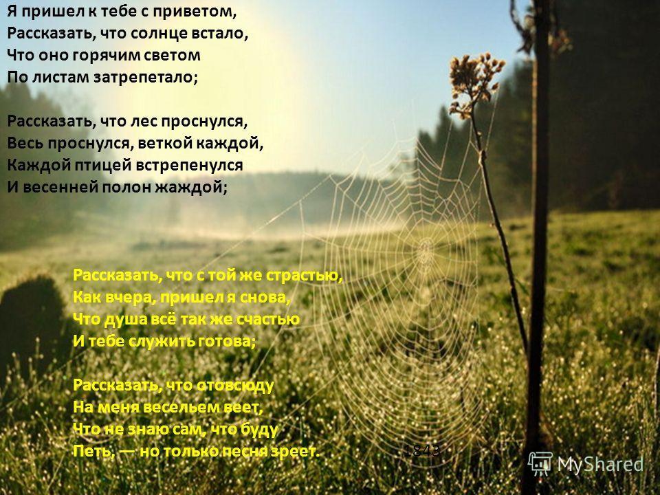 М.Е.Салтыков-Щедрин Салтыков-Щедрин писал: «Фет спрятался в деревне. Там, на досуге, он отчасти пишет романсы, отчасти человеконенавистничает: сперва напишет романс, потом почеловеконенавистничает, потом опять напишет романс и опять почеловеконенавис