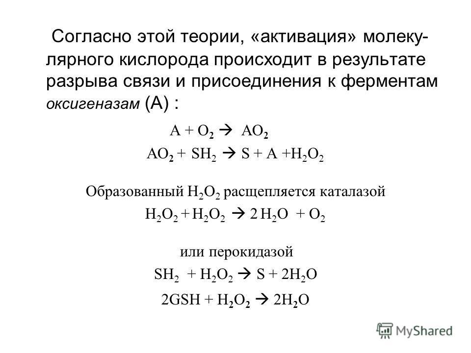 Согласно этой теории, «активация» молеку- лярного кислорода происходит в результате разрыва связи и присоединения к ферментам оксигеназам (А) : A + O 2 AО 2 AО 2 + SH 2 S + A +Н 2 О 2 Образованный Н 2 О 2 расщепляется каталазой Н 2 О 2 + Н 2 О 2 2 Н
