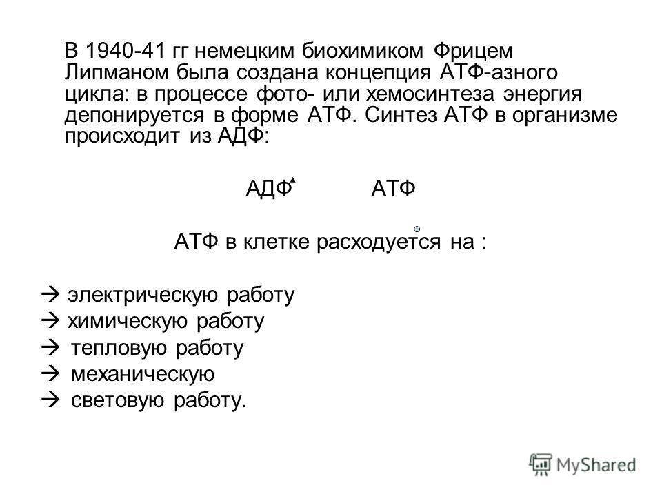 В 1940-41 гг немецким биохимиком Фрицем Липманом была создана концепция АТФ-азного цикла: в процессе фото- или хемосинтеза энергия депонируется в форме АТФ. Синтез АТФ в организме происходит из АДФ: АДФ АТФ АТФ в клетке расходуется на : электрическую