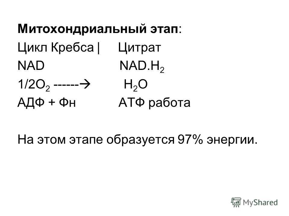 Митохондриальный этап: Цикл Кребса | Цитрат NAD NAD.H 2 1/2O 2 ------ Н 2 О АДФ + Фн АТФ работа На этом этапе образуется 97% энергии.