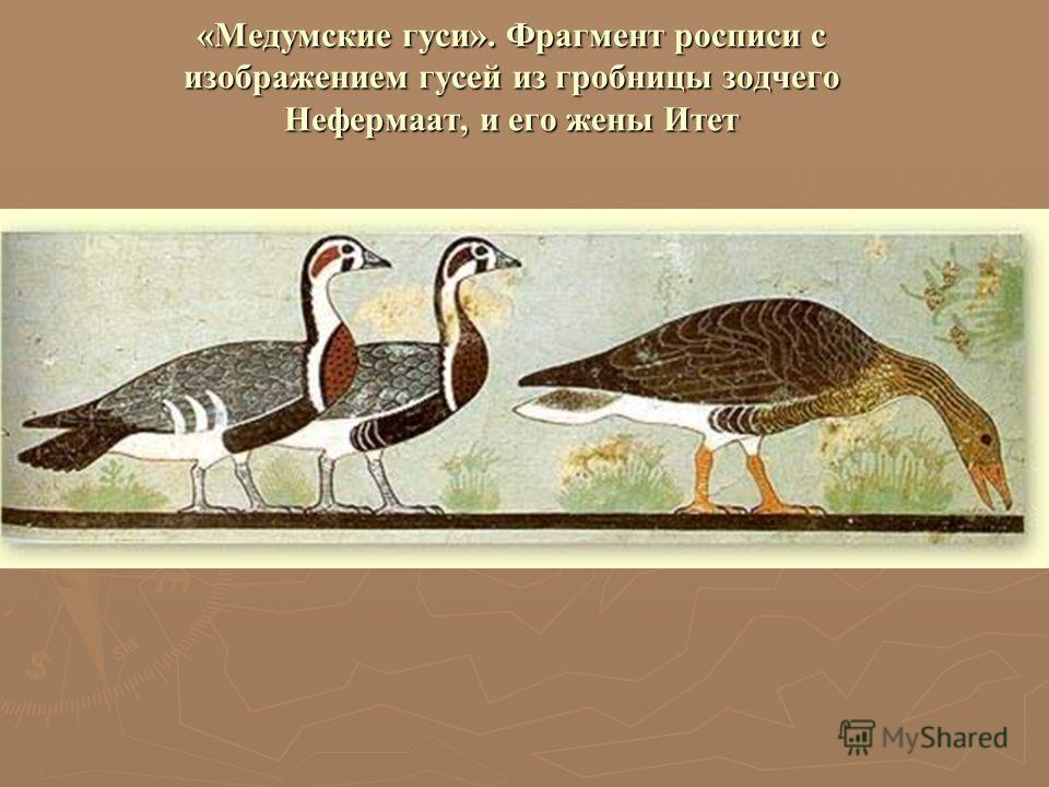 «Медумские гуси». Фрагмент росписи с изображением гусей из гробницы зодчего Нефермаат, и его жены Итет