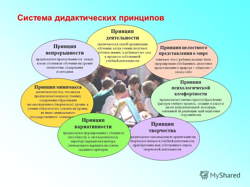 Система дидактических принципов Принцип целостного представления о мире означает, что у ребенка должно быть сформировано обобщенное, целостное представление о природе – обществе – самом себе Принцип деятельности заключается в такой организации обучен