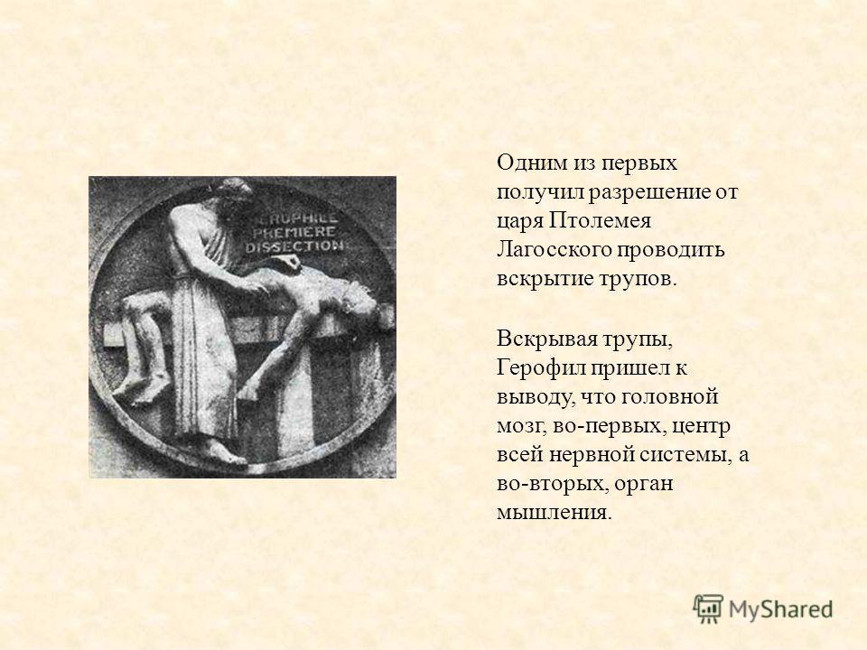 Одним из первых получил разрешение от царя Птолемея Лагосского проводить вскрытие трупов. Вскрывая трупы, Герофил пришел к выводу, что головной мозг, во-первых, центр всей нервной системы, а во-вторых, орган мышления.