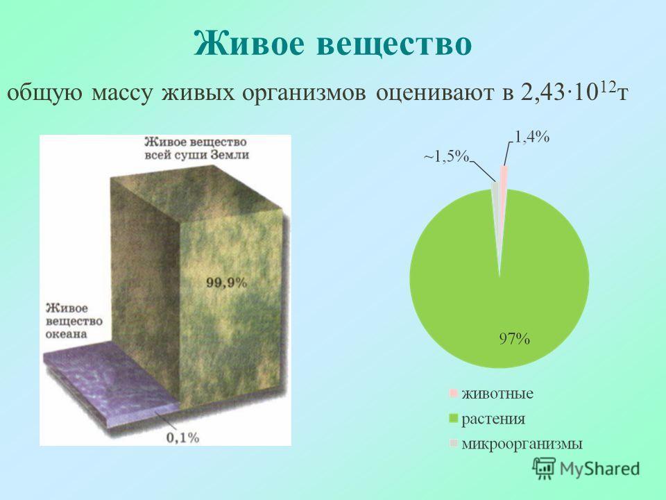 Живое вещество общую массу живых организмов оценивают в 2,43·10 12 т