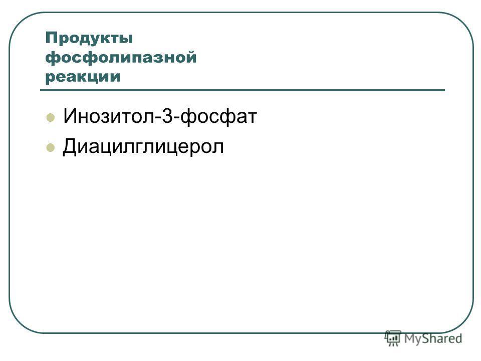 Продукты фосфолипазной реакции Инозитол-3-фосфат Диацилглицерол