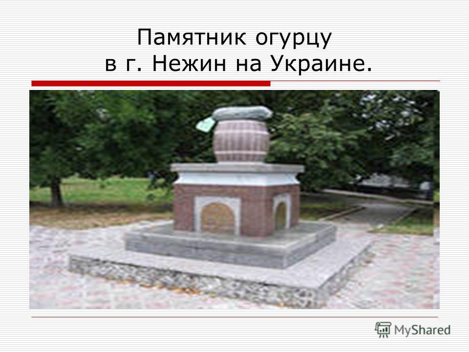 Памятник огурцу в г. Нежин на Украине.