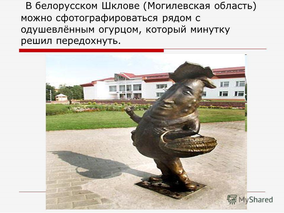 В белорусском Шклове (Могилевская область) можно сфотографироваться рядом с одушевлённым огурцом, который минутку решил передохнуть.