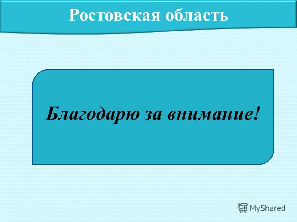 Ростовская область Благодарю за внимание!