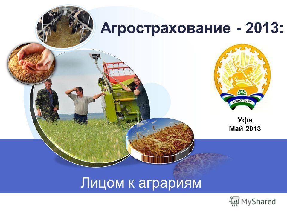 Агрострахование - 2013: Лицом к аграриям Уфа Май 2013