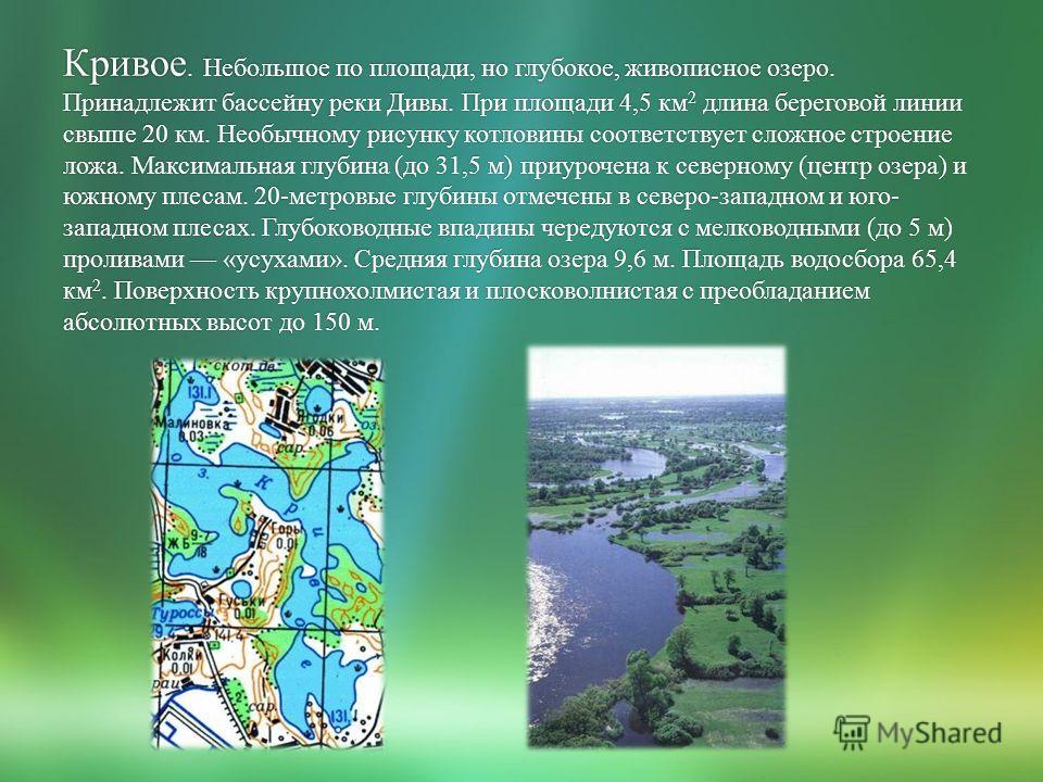 Кривое. Небольшое по площади, но глубокое, живописное озеро. Принадлежит бассейну реки Дивы. При площади 4,5 км 2 длина береговой линии свыше 20 км. Необычному рисунку котловины соответствует сложное строение ложа. Максимальная глубина (до 31,5 м) пр