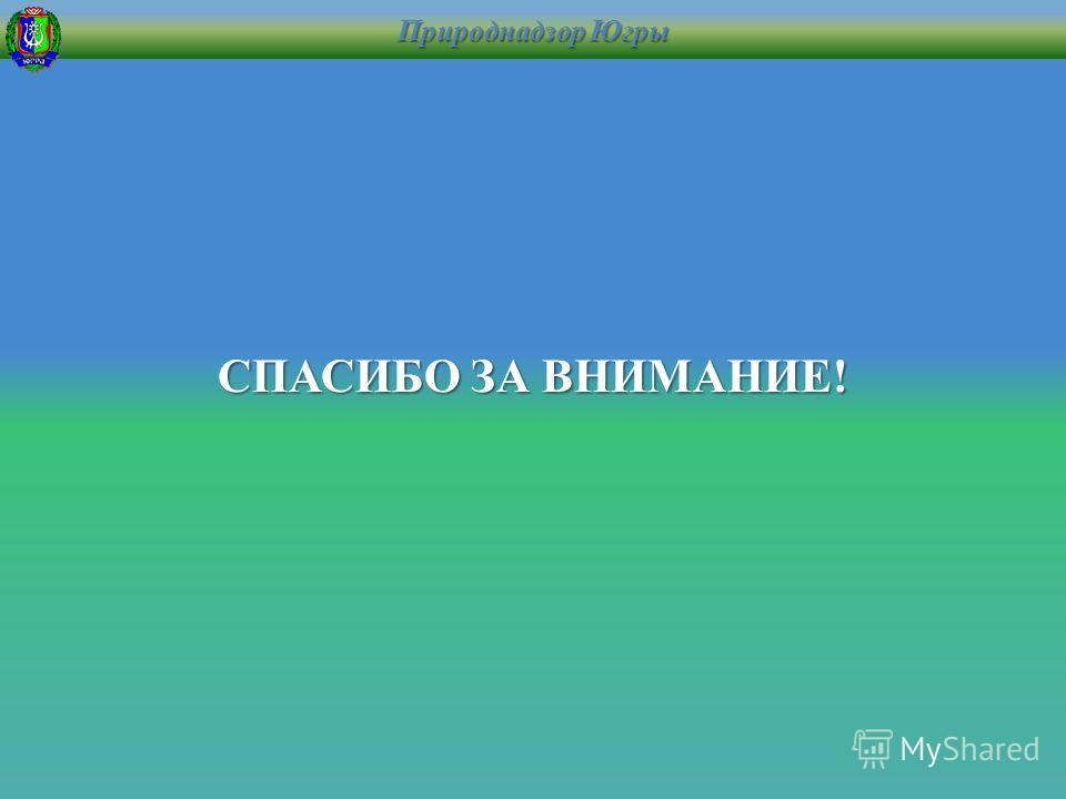 Природнадзор Югры СПАСИБО ЗА ВНИМАНИЕ!