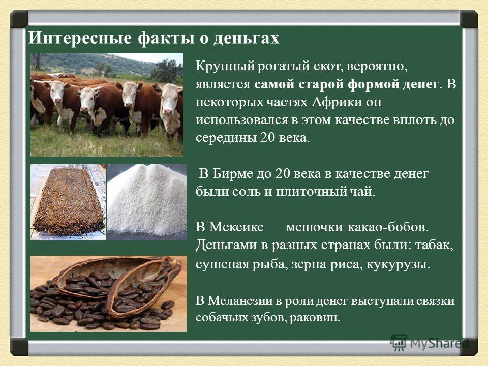 Интересные факты о деньгах Крупный рогатый скот, вероятно, является самой старой формой денег. В некоторых частях Африки он использовался в этом качестве вплоть до середины 20 века. В Бирме до 20 века в качестве денег были соль и плиточный чай. В Мек