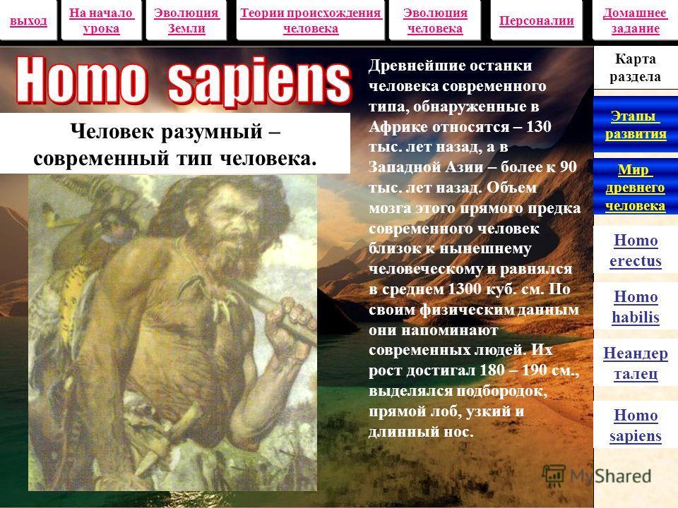 100 – 40 тыс. лет назад на широких просторах Евразии пылали костры неандертальцев – первых настоящих людей, появившихся на Земле. Если судить по европейским находкам, неандерталец был коренастым, с мощной мускулатурой и массивным скелетом. Рост его б