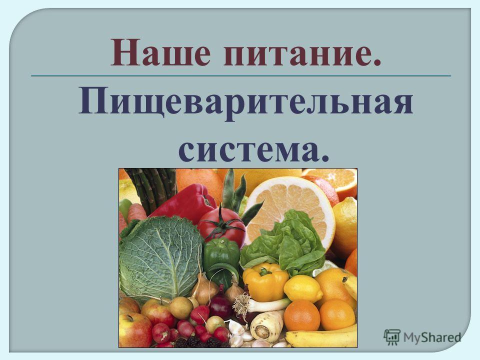 Наше питание. Пищеварительная система.
