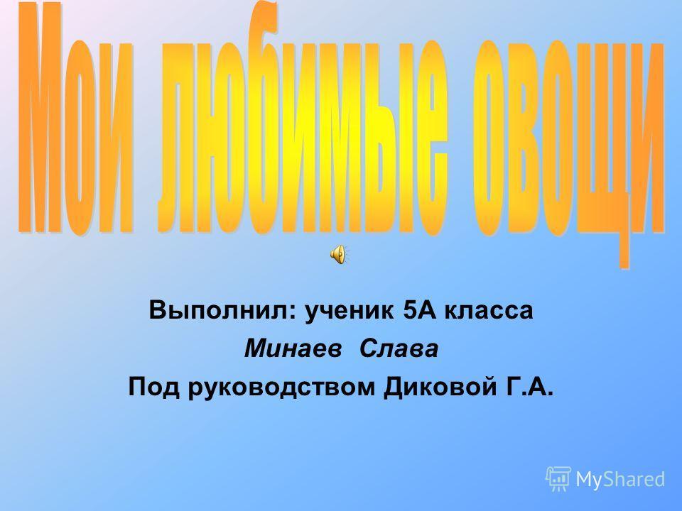 Выполнил: ученик 5А класса Минаев Слава Под руководством Диковой Г.А.